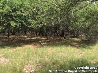 LOT 101 English Crsg, Bandera, TX 78003 (MLS #1399483) :: The Gradiz Group