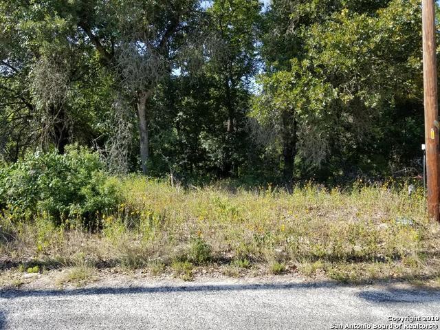 4011 Storm Oak Dr, Elmendorf, TX 78112 (MLS #1399633) :: The Glover Homes & Land Group