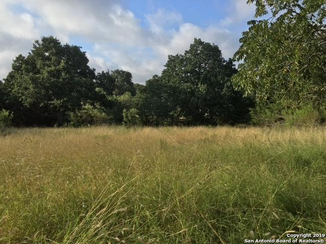 BLK 6, LOT 35 Spring Rd, Fredericksburg, TX 78624 (MLS #1399652) :: The Castillo Group