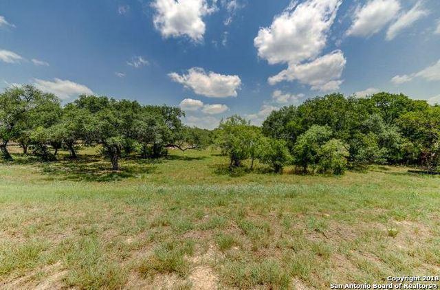 12231 Westcreek Oaks, San Antonio, TX 78253 (MLS #1399723) :: Neal & Neal Team