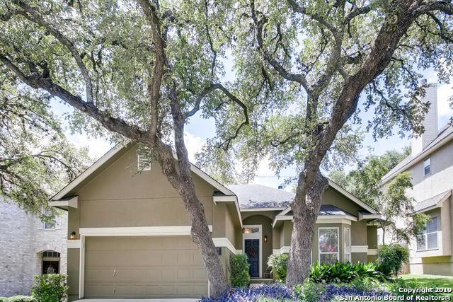 115 Osiana Dr, San Antonio, TX 78248 (MLS #1399765) :: Magnolia Realty