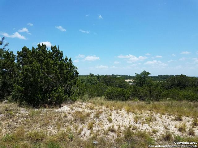 306 Ridge Pt, Spring Branch, TX 78070 (MLS #1399811) :: The Gradiz Group