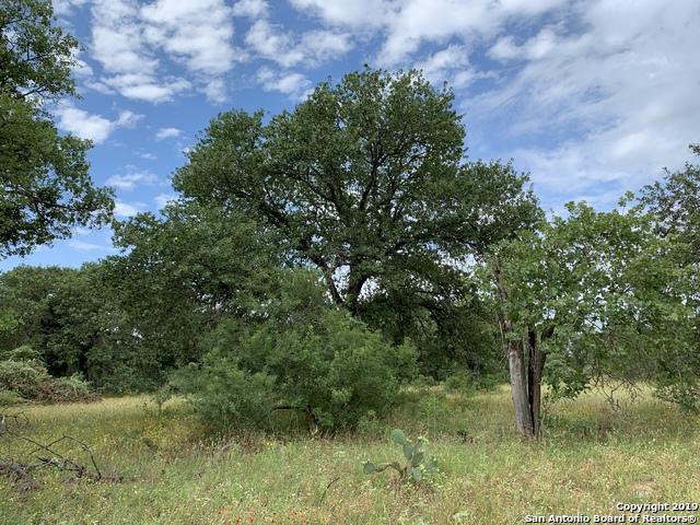 370 Webb Rd, Somerset, TX 78069 (MLS #1399936) :: NewHomePrograms.com LLC