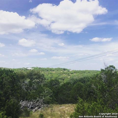 25002 Caliza Cove, Boerne, TX 78006 (MLS #1399985) :: Exquisite Properties, LLC