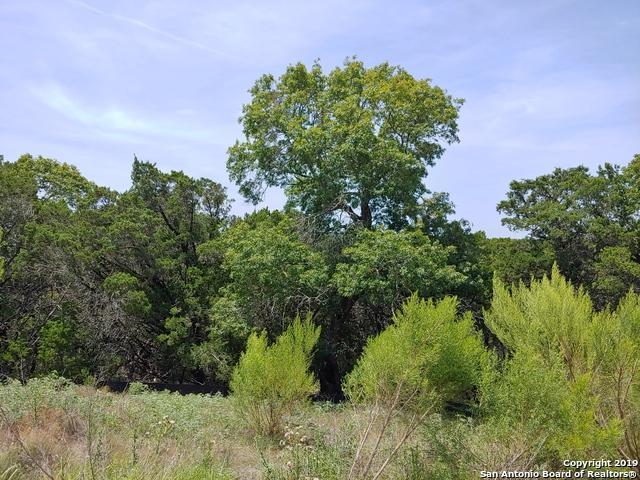1475 Merlot, New Braunfels, TX 78132 (MLS #1399990) :: Alexis Weigand Real Estate Group