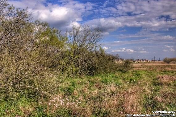 209 Gentle Breeze, Floresville, TX 78114 (MLS #1400182) :: Alexis Weigand Real Estate Group