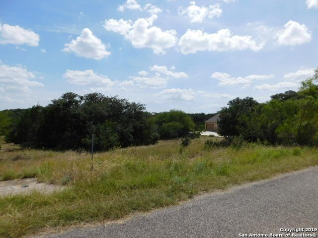 153 Iron Horse, New Braunfels, TX 78132 (MLS #1400214) :: Exquisite Properties, LLC