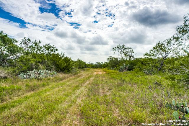10651 Fowler Rd, Atascosa, TX 78002 (MLS #1400269) :: Legend Realty Group