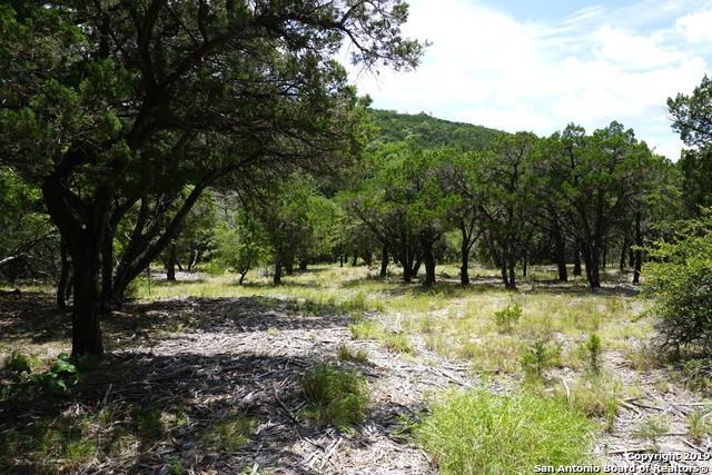 441 Private Road 1706, Helotes, TX 78023 (MLS #1400278) :: Alexis Weigand Real Estate Group