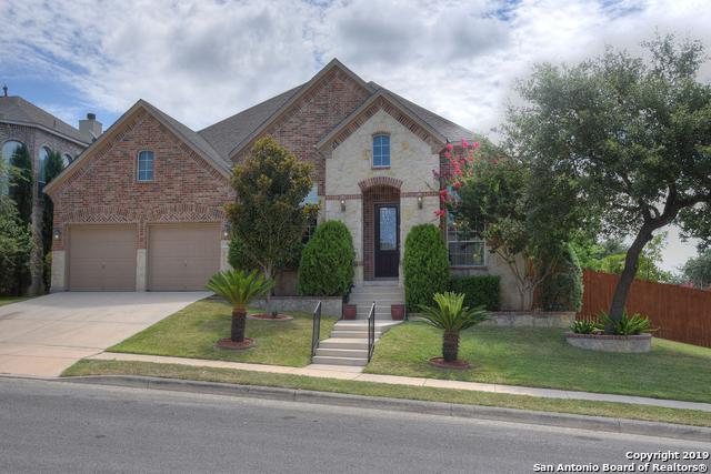 16002 Ponderosa Pass, Helotes, TX 78023 (MLS #1400409) :: Alexis Weigand Real Estate Group
