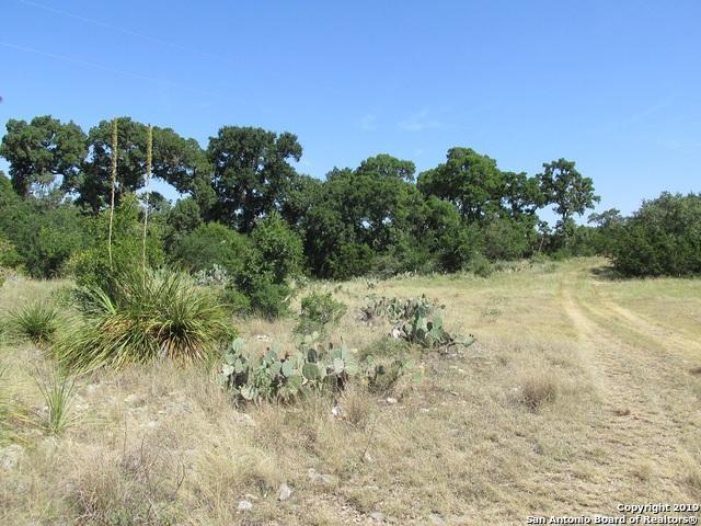 366 Private Road 2538, Hondo, TX 78861 (MLS #1400785) :: BHGRE HomeCity
