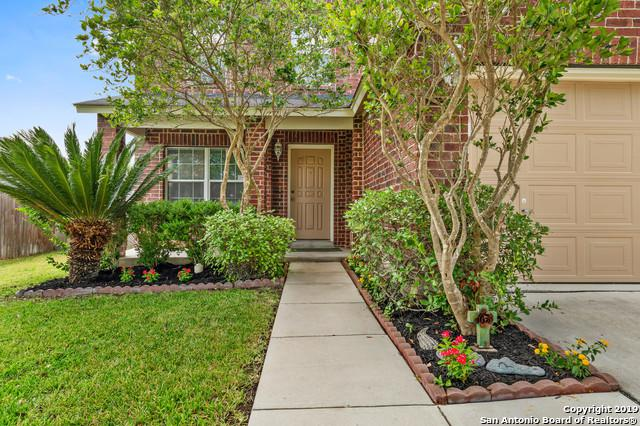368 Scenic Mdw, New Braunfels, TX 78130 (MLS #1400993) :: Alexis Weigand Real Estate Group