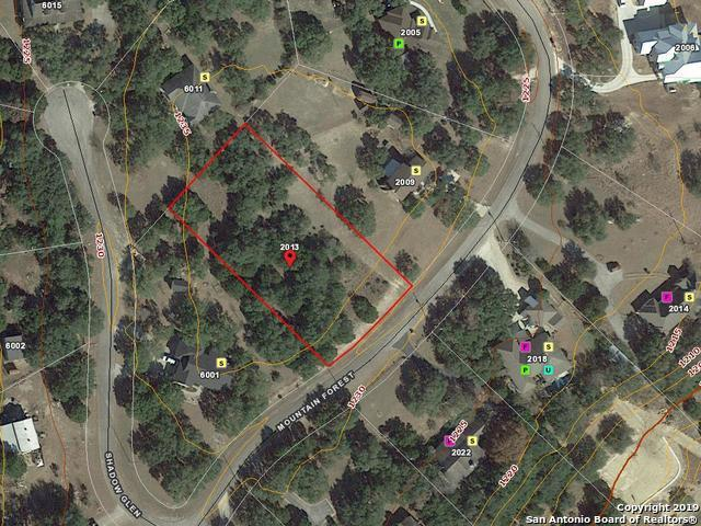 2013 Mountain Forest, Spring Branch, TX 78070 (MLS #1401271) :: Tom White Group