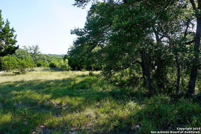 1813 Split Mtn, Canyon Lake, TX 78133 (MLS #1401383) :: BHGRE HomeCity