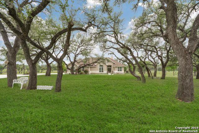 170 Roadrunner Ln, Kerrville, TX 78028 (MLS #1401548) :: Reyes Signature Properties