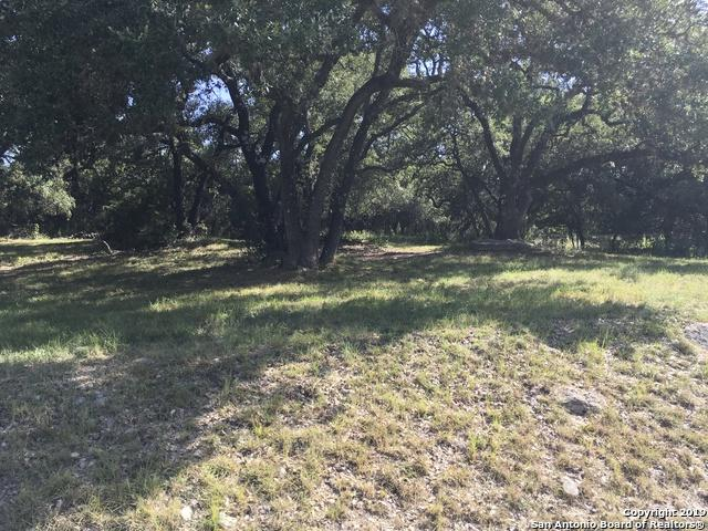 28922 Chartwell Ln, San Antonio, TX 78015 (MLS #1401860) :: Alexis Weigand Real Estate Group