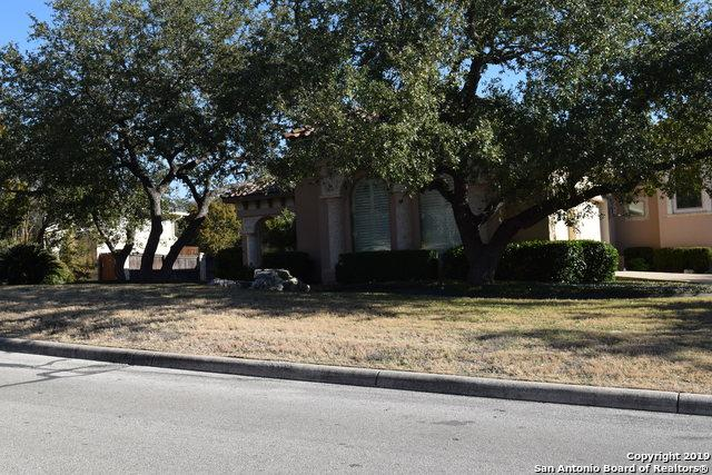 20006 Messina, San Antonio, TX 78258 (MLS #1402113) :: The Castillo Group