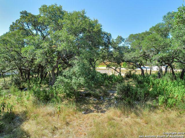 LOT 30 Alberi Ln, Boerne, TX 78006 (MLS #1402845) :: The Castillo Group