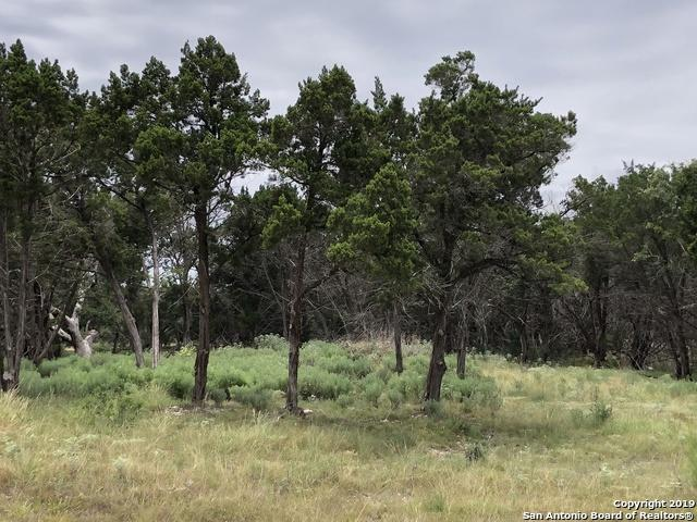 2077 (LOT 1242) Marsala, New Braunfels, TX 78132 (MLS #1403147) :: BHGRE HomeCity