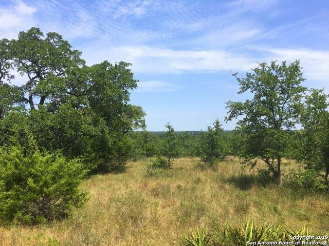 111 N Calvin Barrett, Blanco, TX 78606 (MLS #1403168) :: Exquisite Properties, LLC