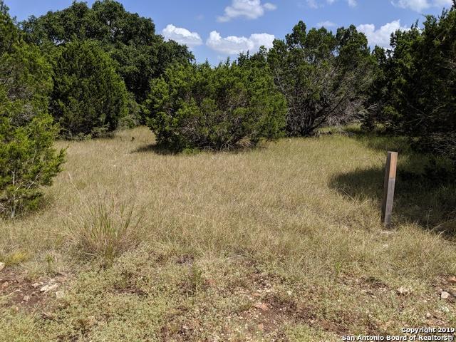 275 Curvatura, New Braunfels, TX 78132 (MLS #1403203) :: BHGRE HomeCity