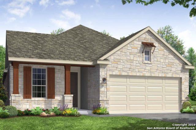 14317 Gold Rush Pass, San Antonio, TX 78254 (MLS #1403828) :: BHGRE HomeCity
