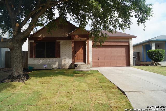 4611 Desert Poppy, San Antonio, TX 78247 (MLS #1403945) :: BHGRE HomeCity