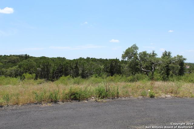 BLOCK 1 LOT 15 Pr 2773, Mico, TX 78056 (MLS #1404559) :: Alexis Weigand Real Estate Group