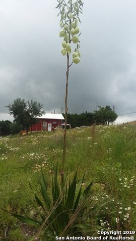 2135 Broad Oak Drive, Bandera, TX 78003 (MLS #1404619) :: Glover Homes & Land Group