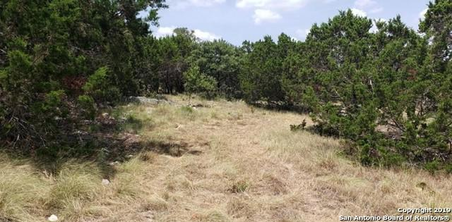 431 Rosinweed Dr, Spring Branch, TX 78070 (MLS #1404624) :: The Mullen Group   RE/MAX Access