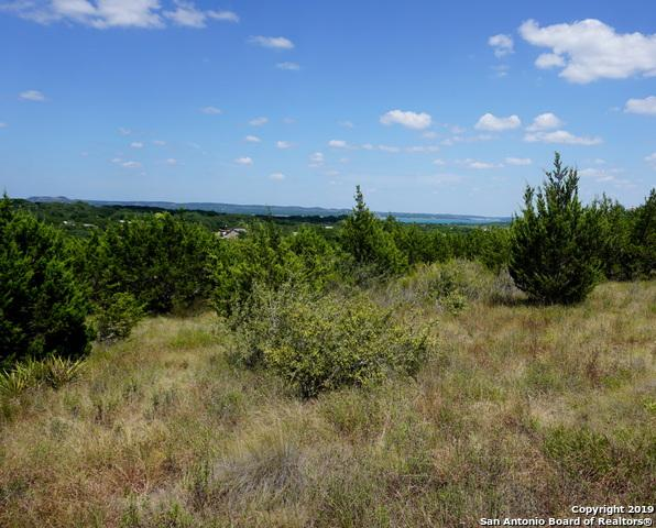 224 San Salvadore, Canyon Lake, TX 78133 (MLS #1404677) :: Real Estate by Design
