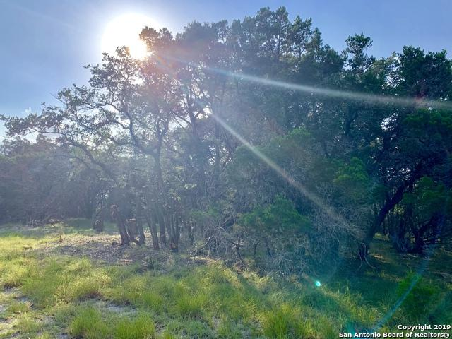 N/A Circle Drive, Wimberley, TX 78676 (MLS #1404789) :: Vivid Realty