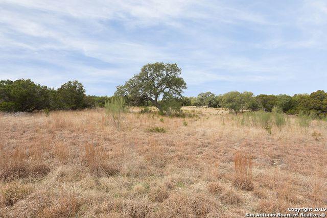 108 Jackson Creek, Canyon Lake, TX 78133 (MLS #1405225) :: BHGRE HomeCity