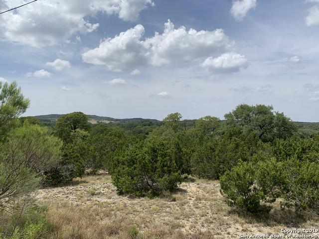 339 Vista View Pl, Spring Branch, TX 78070 (MLS #1405245) :: The Mullen Group   RE/MAX Access