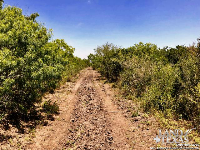 TRACT 2 Hwy 59, Freer, TX 78357 (MLS #1405258) :: Alexis Weigand Real Estate Group