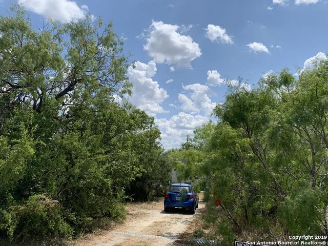 118 Starburst Trail, Seguin, TX 78155 (MLS #1405366) :: Tom White Group