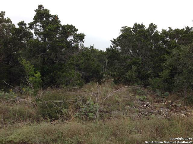 LOT 482 County Road  2723, Mico, TX 78056 (MLS #1407885) :: BHGRE HomeCity