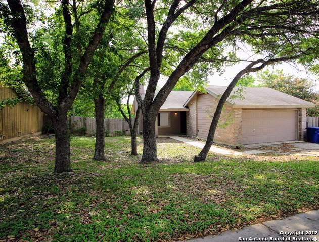 16615 Saltgrass St, San Antonio, TX 78247 (#1408028) :: The Perry Henderson Group at Berkshire Hathaway Texas Realty