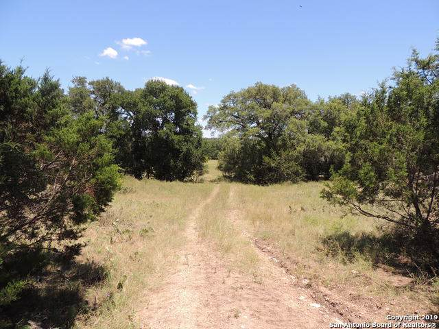 3020 Buck Meadow Trail, Spring Branch, TX 78070 (MLS #1408085) :: Santos and Sandberg