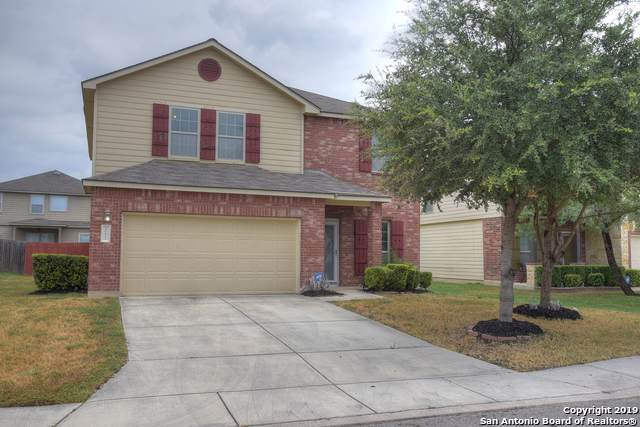 10611 Tansy Canyon, Helotes, TX 78023 (#1408375) :: The Perry Henderson Group at Berkshire Hathaway Texas Realty