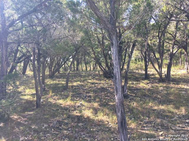 LOT 9 Peninsula, Bandera, TX 78003 (MLS #1408540) :: BHGRE HomeCity