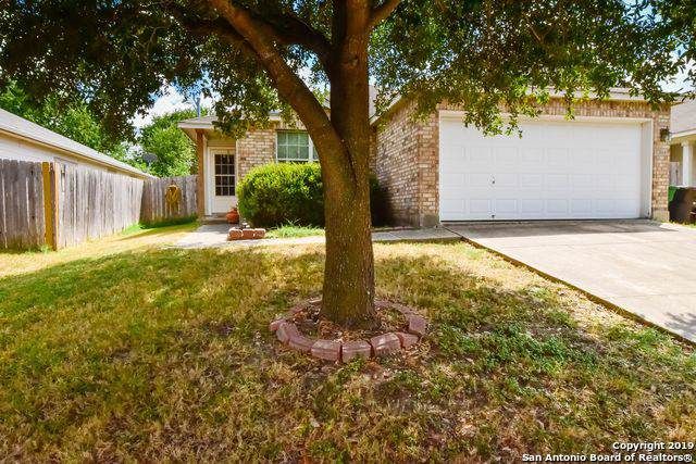 6154 Brandys Farm, San Antonio, TX 78244 (MLS #1408567) :: The Gradiz Group