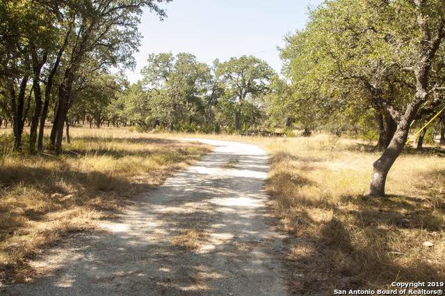 2585 W Ammann Rd, Bulverde, TX 78163 (MLS #1408588) :: The Mullen Group | RE/MAX Access