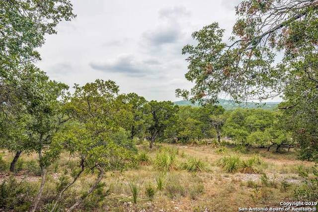 24380 Scenic Loop Rd, San Antonio, TX 78255 (#1408744) :: The Perry Henderson Group at Berkshire Hathaway Texas Realty
