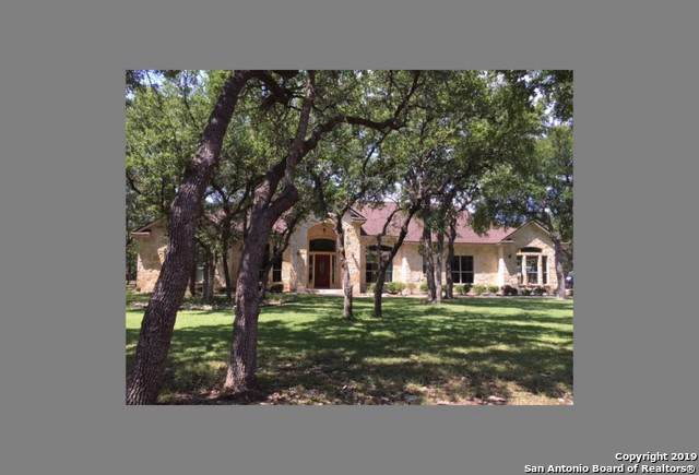 250 Gold Oaks Dr, Spring Branch, TX 78070 (MLS #1408772) :: The Gradiz Group