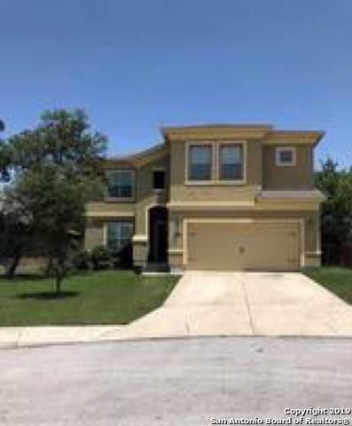 26102 Raven Feather, San Antonio, TX 78260 (MLS #1408803) :: BHGRE HomeCity