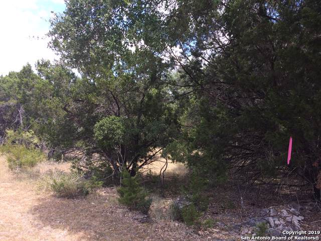 1401 Hillcrest Forest, Canyon Lake, TX 78133 (MLS #1408844) :: Neal & Neal Team