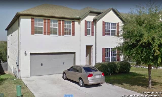 1427 Osnats Pt, San Antonio, TX 78258 (MLS #1409188) :: BHGRE HomeCity