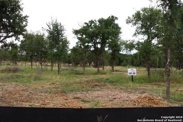 LOT 30 Trophy Oak Ln, Marble Falls, TX 78654 (#1409238) :: The Perry Henderson Group at Berkshire Hathaway Texas Realty