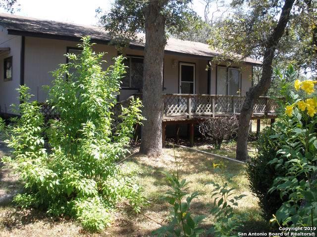 195 Blackjack Oak Rd, Seguin, TX 78155 (MLS #1409248) :: BHGRE HomeCity
